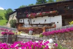 Sommer im Vinschgau