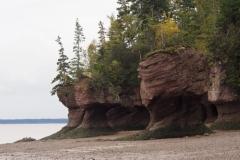 die Hopewell Rocks bei Ebbe