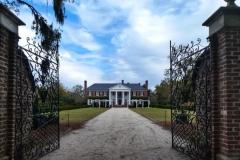 Boone Hall Plantation - hier wurde Fackeln im Sturm gedreht