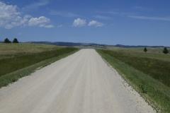 Game Drive im Custer