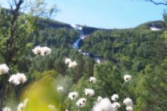 Gaularfjellet - Norwegen 2016