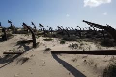 Praia do Barril