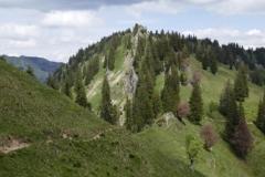 herrliche Wege in den Bergen der Nagelfluhkette