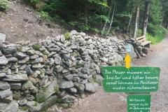 sogar im bayerischen Wald ist die Mauer ein Thema!