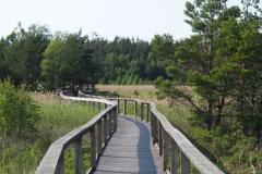 im Naturpark am Vänernsee
