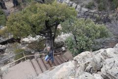 alle Stufen wieder hoch ;-)