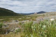 unser schönes Freistehplätzchen im Dovrefjell Nationalpark