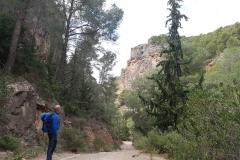 in der Sierra Espuna